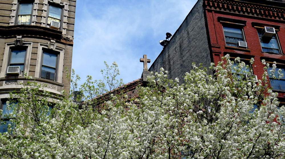 spring-in-nyc-031
