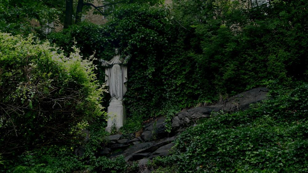 bronx-botanical-391